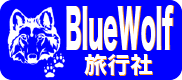 BlueWolf Travel